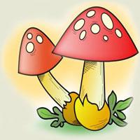 Ghicitoare pentru copii despre ciuperci