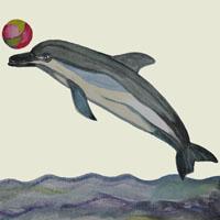 Afabetul pentru copii - Litera D - Delfin