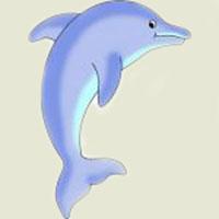 Ghicitoare pentru copii despre delfin