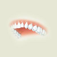Ghicitoare pentru copii despre dinţi
