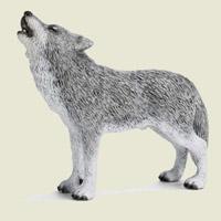 Ghicitoare pentru copii despre lup