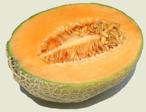 extract de pepene galben pentru pierderea în greutate)