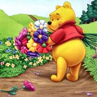 Ghicitoare pentru copii despre urs